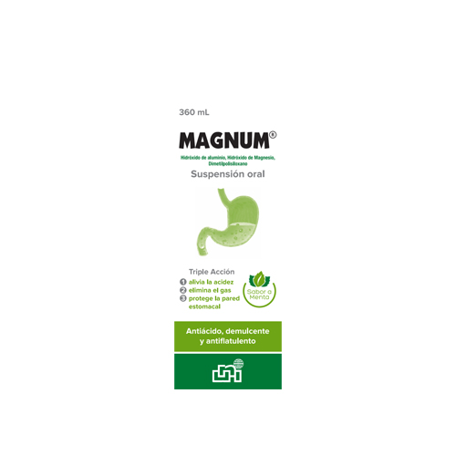Presentacion Magnum